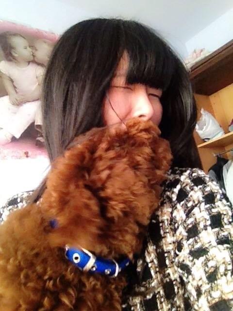 美嘉抱得巨型泰迪犬