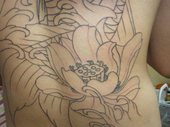 鲤鱼纹身手稿 满背分享展示图片图片