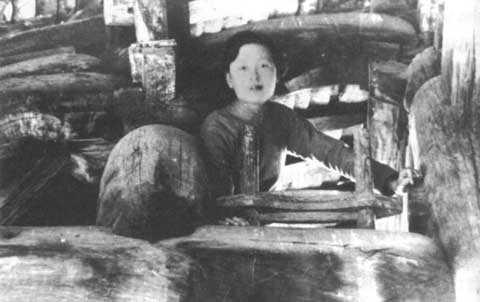 回复:梁思成林徽因艰辛的古建考察之路图片