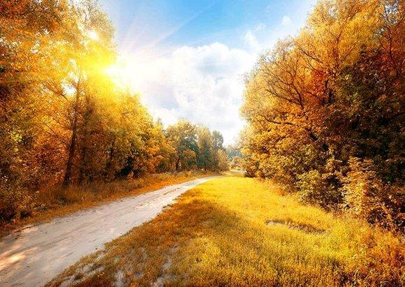十月,回眸,浅望,秋意渐浓,气温也逐渐变得寒凉.