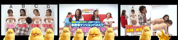 日本猜女儿人综艺节目
