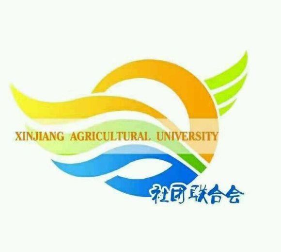 新疆农业大学社团联合会 新疆图片