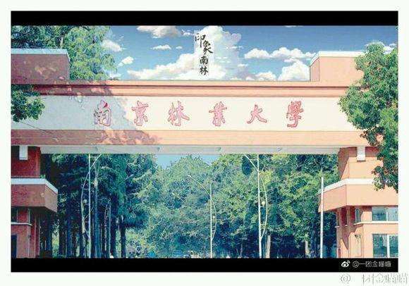 南京林业大学是几本啊,我想学风景园林,要比一本高几分能进?图片