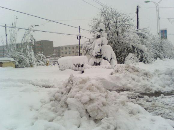暴雪降雪量