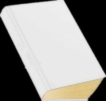 立体书模图片