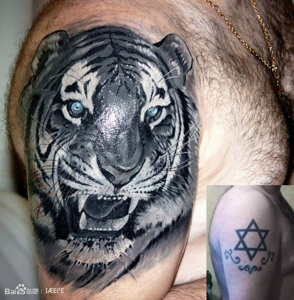 天神猪八戒刺青图片_第1张图片_纹身图案图片