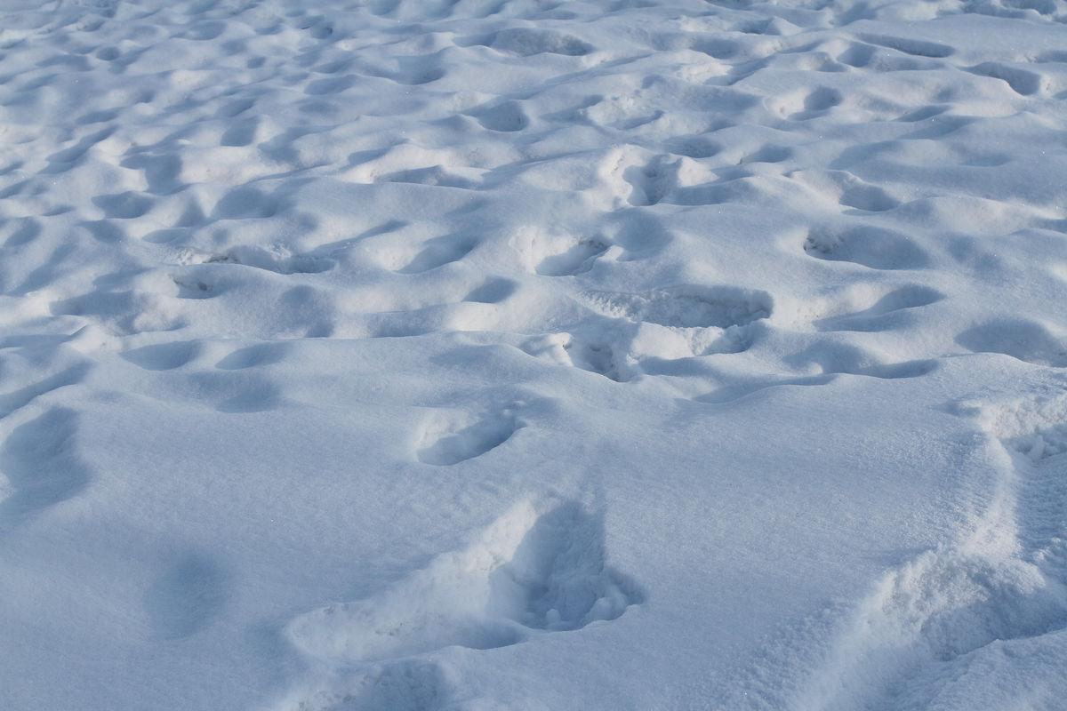 雪��/~���x+�x�&�7:d��_冬天 雪 白雪
