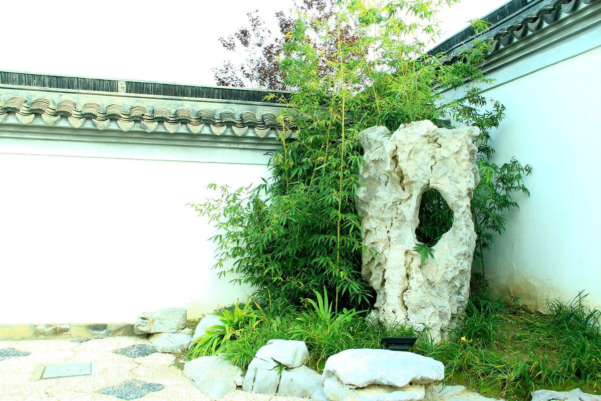 摄影,庭院,园林,回廊,长廊,亭子,传统,古典,中式庭院,中式院墙,古典图片