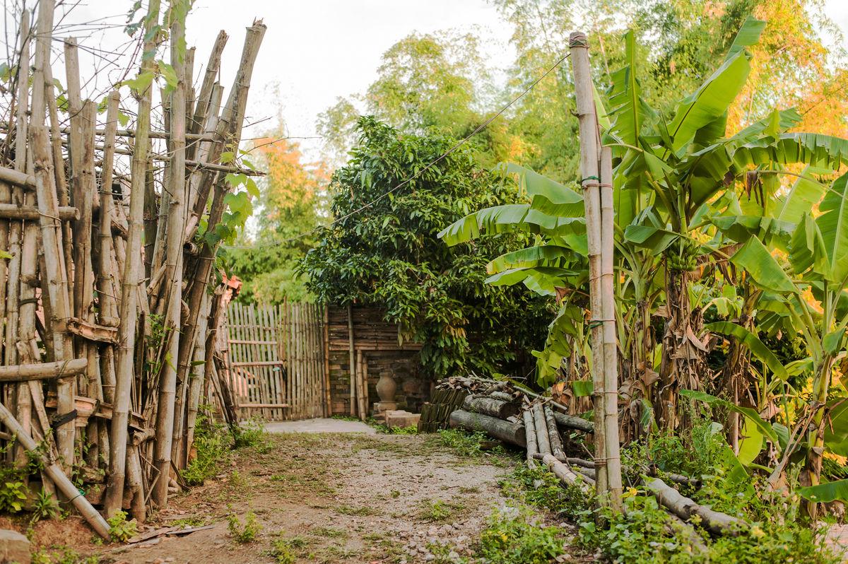 乡村小景,乡村风景,乡里人家,农村小景,农家,芭蕉树,篱笆墙,农家小院图片