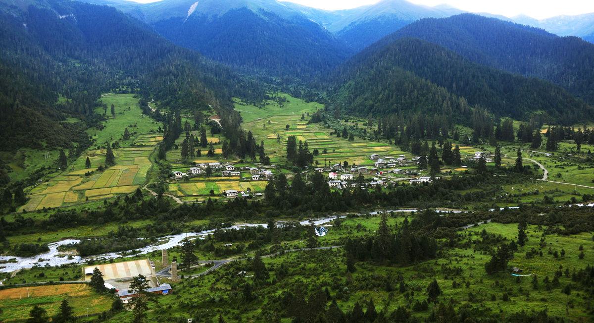西藏林芝鲁朗小镇图片