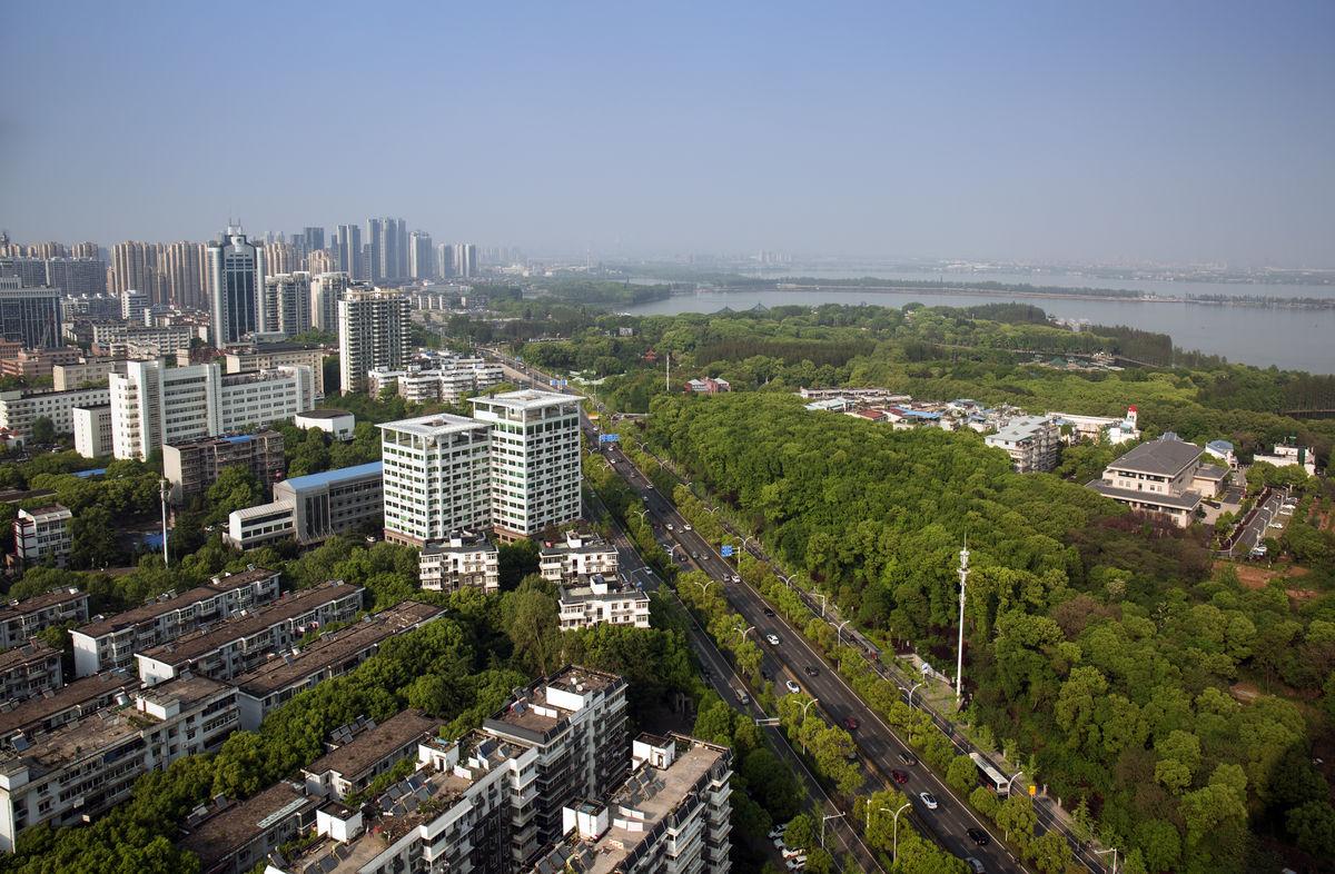东湖边的武汉大道图片