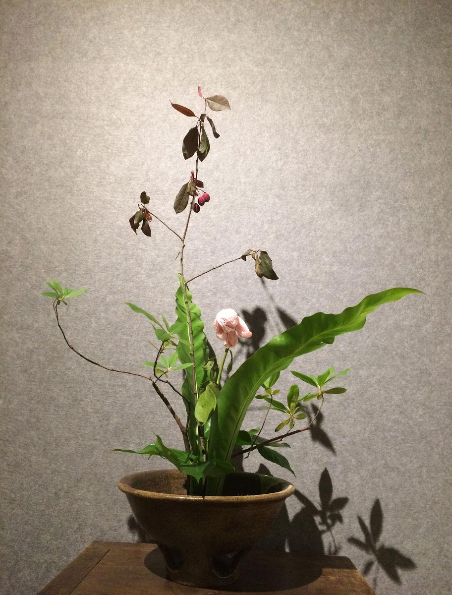 创意,园艺,艺术,插花,创意花艺,装饰花,文艺花束,灰色背景,花艺造型图片
