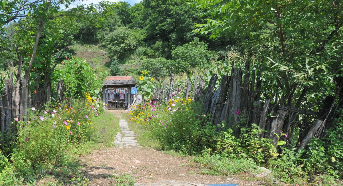 湿地,水源地,吉林风光,抚松县,义恩文轩作品,东北,乡村,农家小院图片