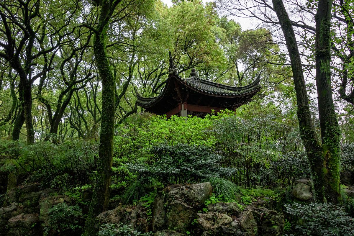 园林造景亭子,四角亭,江南园林,中式建筑,园林建筑,园林景观,园林图片