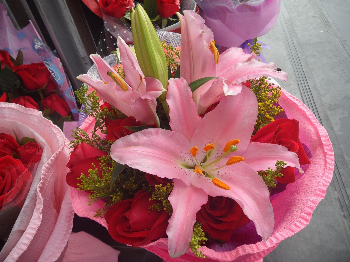 香水百合,姬百合,玫瑰,花束,花草,花朵,鲜花,植物,花卉,七夕节,7夕图片