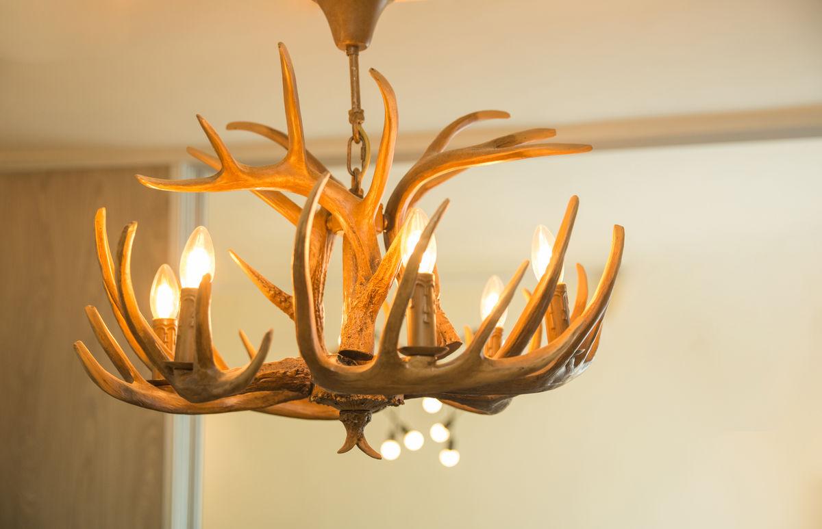 灯具,吊灯,北欧风,树杈,特色,北欧,欧洲,风情,暖色,灯光,会所,客厅图片