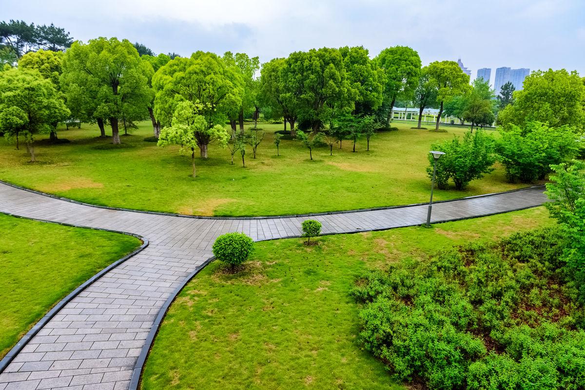 树林林地,城市花园,道路绿化设计,道路景观环境,城市公共绿地,浙江图片