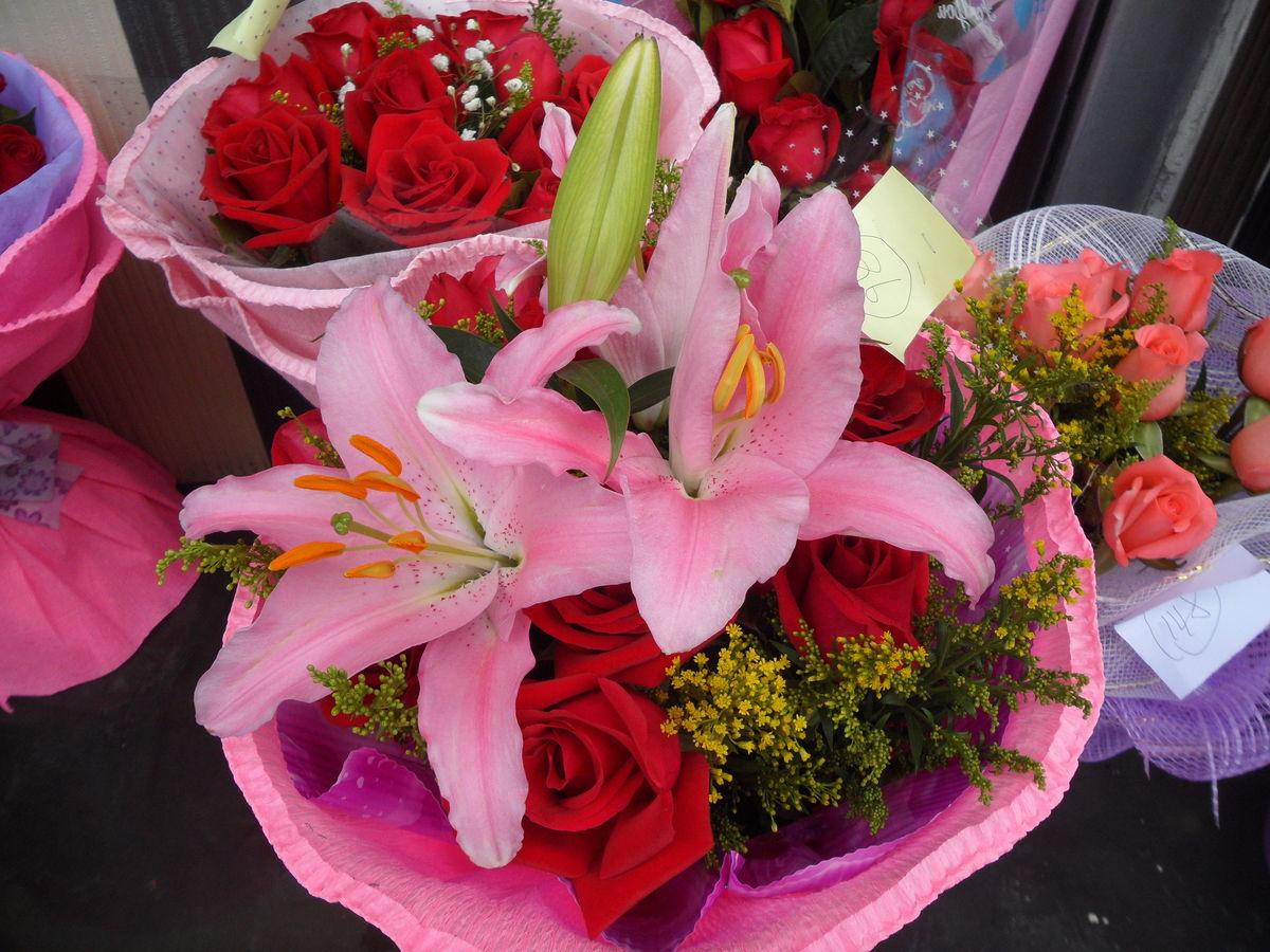 粉玫瑰,红色,红玫瑰,玫瑰,红花,花草,花朵,鲜花,植物,花卉,七夕节图片