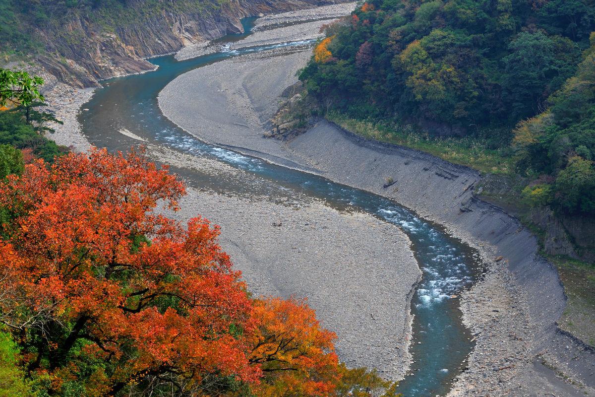 台湾,桃园县,桃园,复兴乡,巴陵,秋天景观,枫树,枫叶,北横,北横公路图片