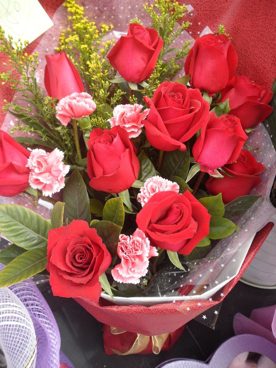红玫瑰,玫瑰,花束,花草,花朵,鲜花,植物,花卉,七夕节,7夕,情人节图片