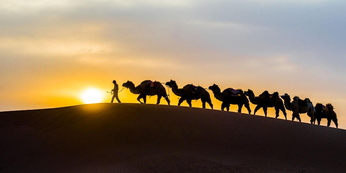 驼队,骆驼,晚霞,驼铃,牧民,沙丘,沙漠,沙山