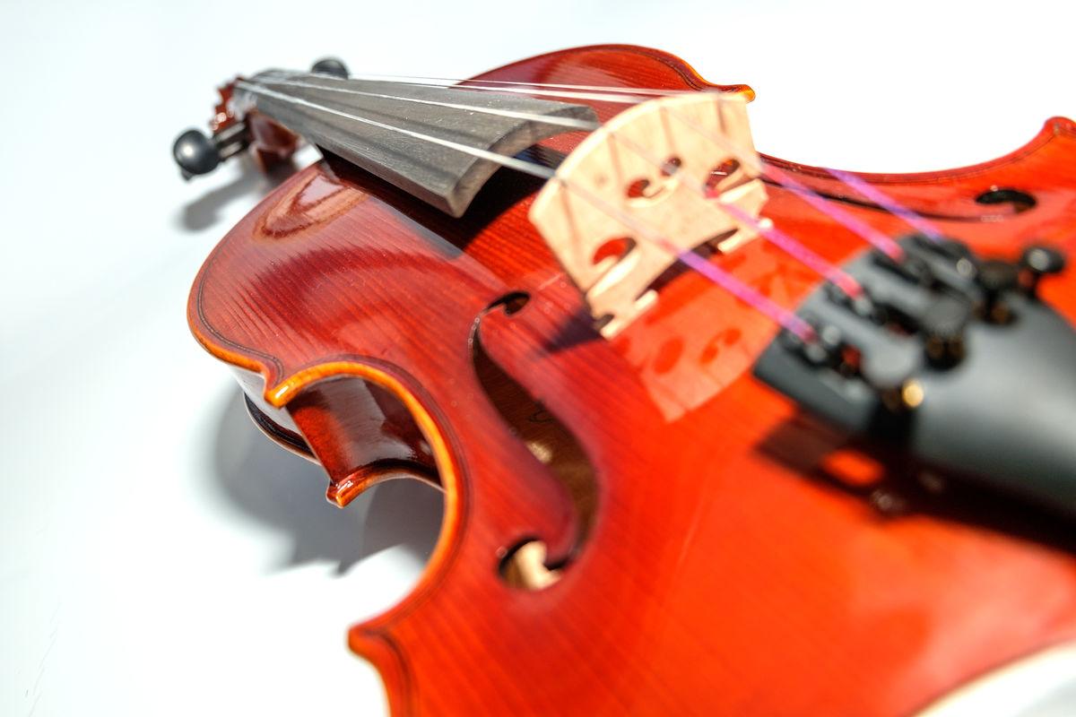 小提琴,古典,棕色,曲子,曲调,调子,和弦,弦,古物,艺术,演出,白背景图片
