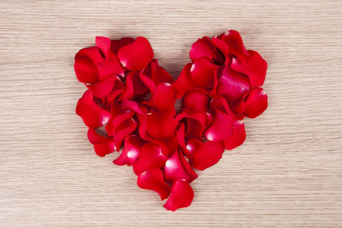 背景,概念,叶片,玫瑰,照片,心形,爱情,花瓣,爱,心形鲜花,玫瑰花瓣图片