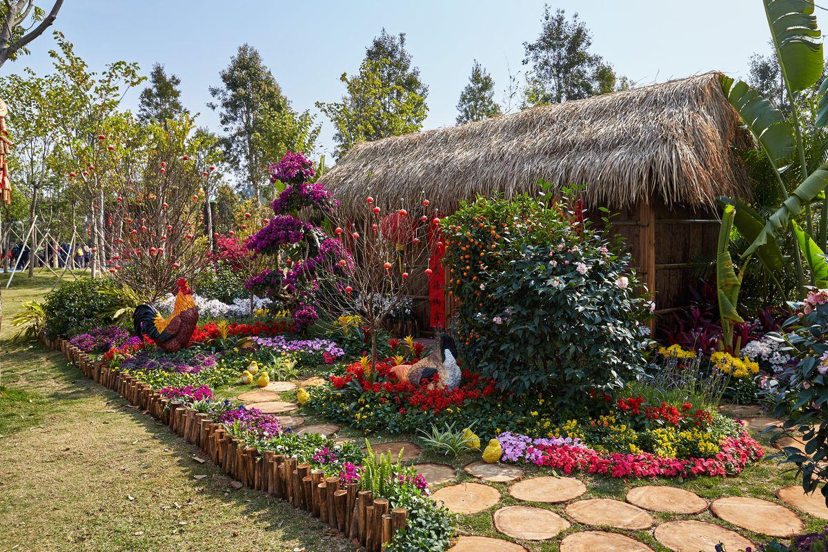 农村院落庭院,农家小院,小院一角,农村生活,大公鸡,过新年,中国农村图片