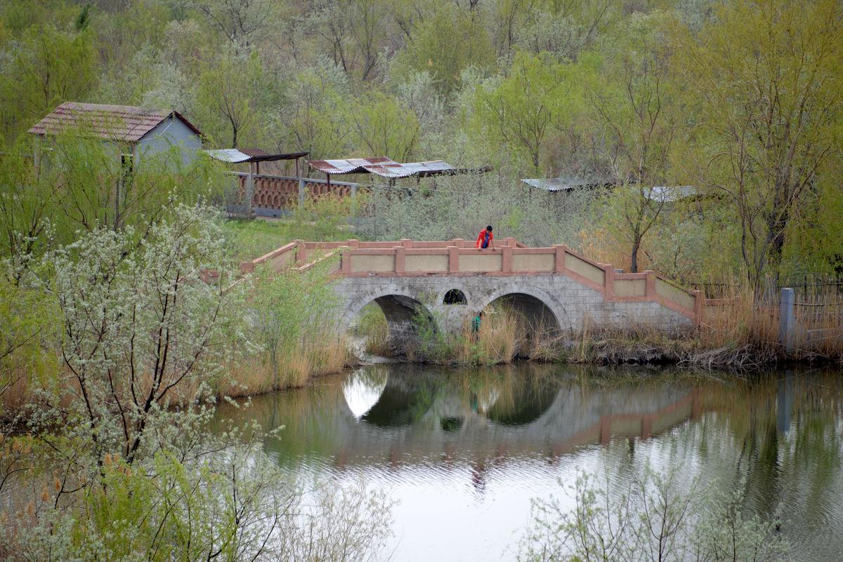 乡村 小桥图片