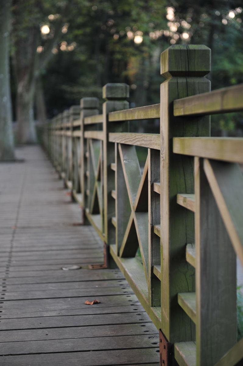 栏杆,护栏,栈道,栅栏,木栏,中式走廊,透视,武汉植物园图片