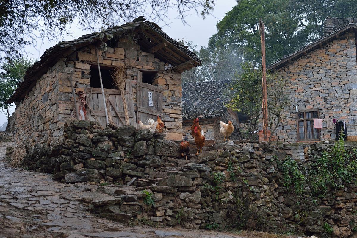山村,淳朴,农家小院,鸡,土屋,农家,原生态,农村,乡村土屋,村庄,山区图片