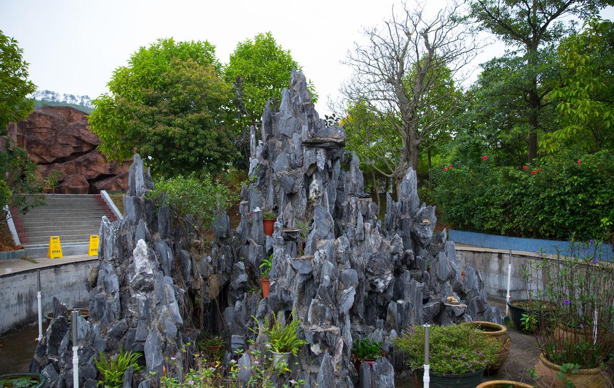 假山盆景 奇石盆景图片