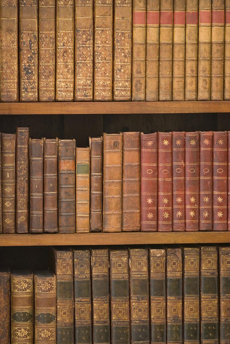 档案图书 高校图书馆系统荐书的调查与思考