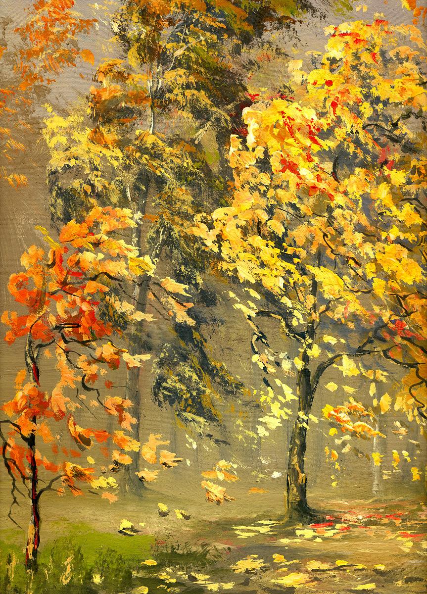自然,垂直画幅,乡村路,落下,离开,巷,黄色,气候,树,叶子,光,秋天,落叶图片