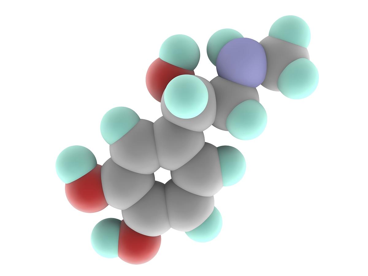 单个物体的结构素�_肾上腺素肾上腺素分子