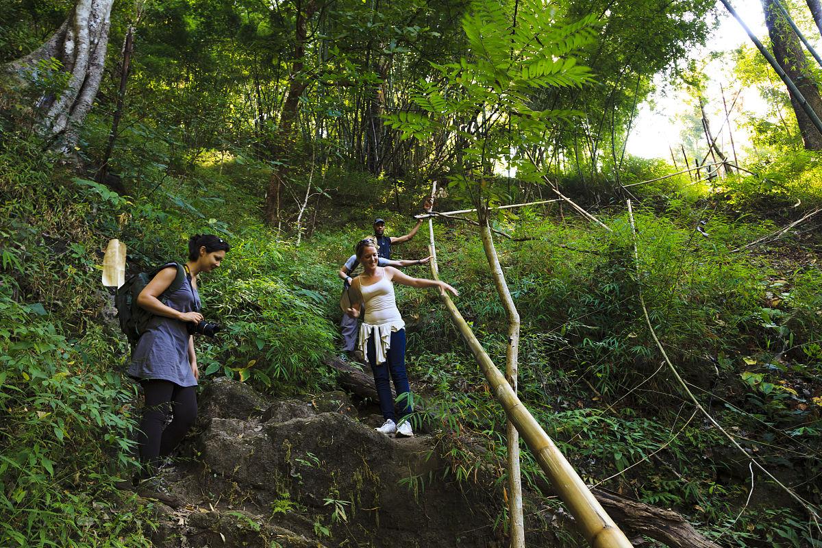 丛林徒步穿越泰国的湄taeng地区图片