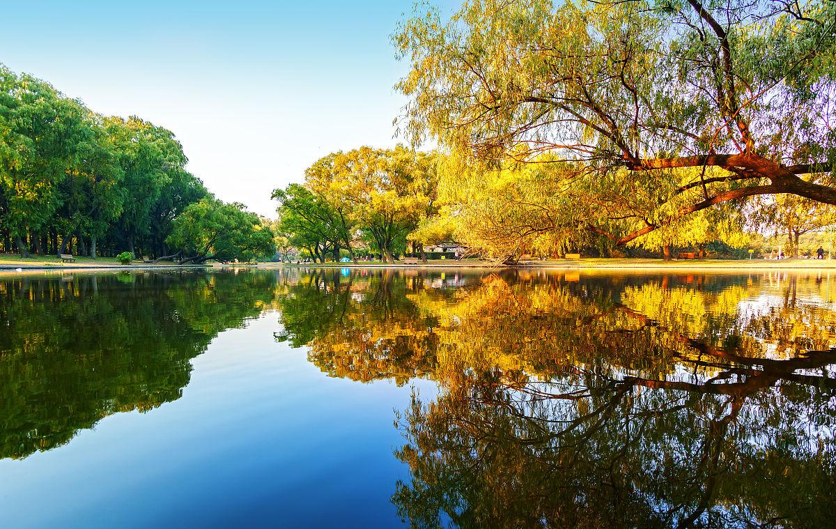 上海共青森林公园的秋色图片