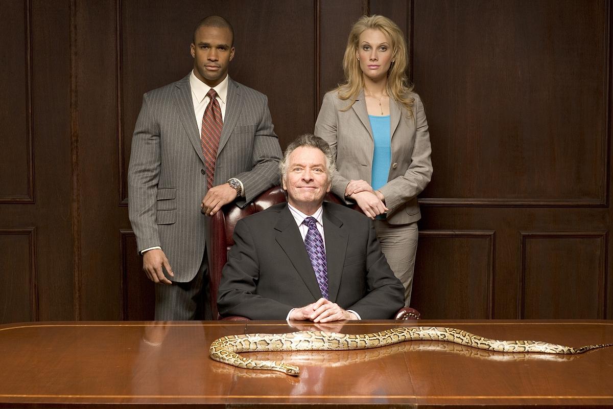 在会议桌上与python蛇站在一起的商人