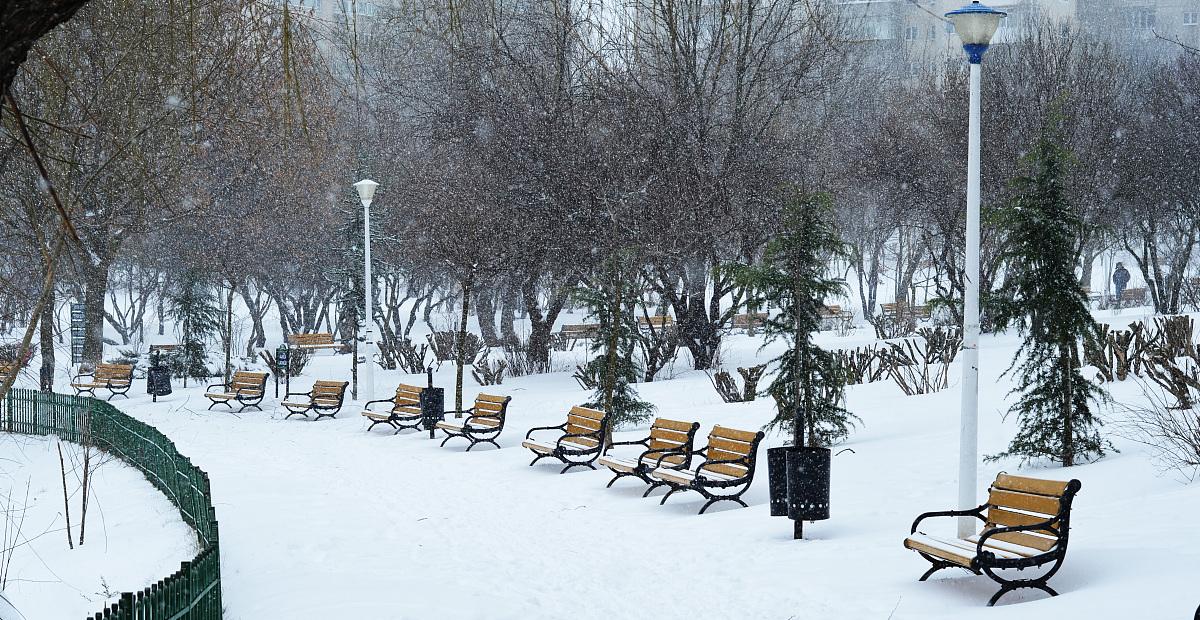 终于下雪了图片