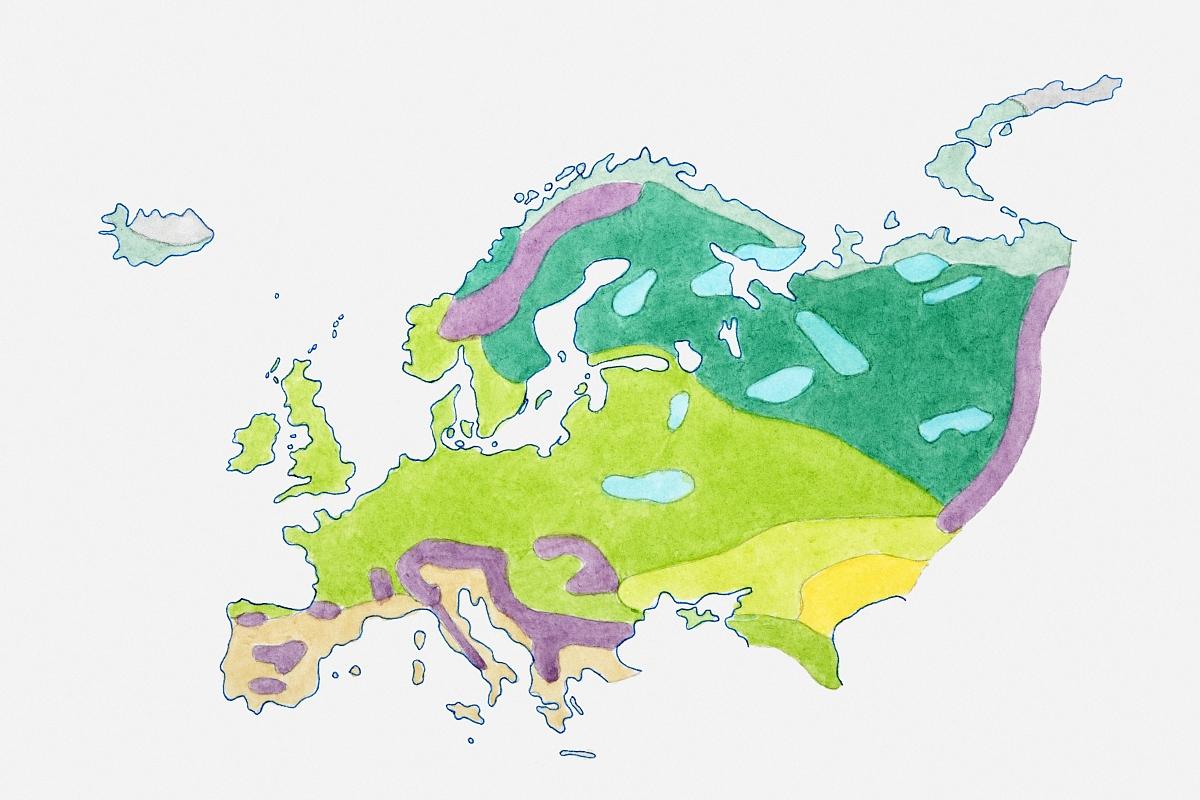 欧洲地图插图图片