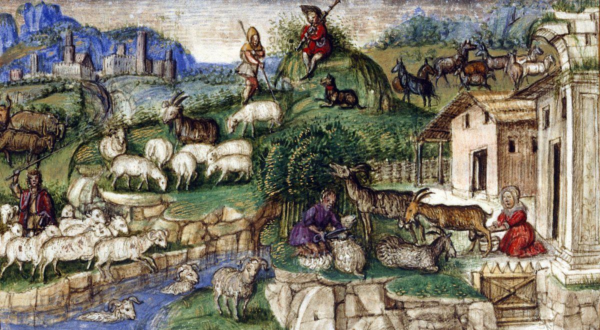 农业,水平画幅,户外,田园风光,中世纪时代,欧洲,白人,动物,职业,农民图片