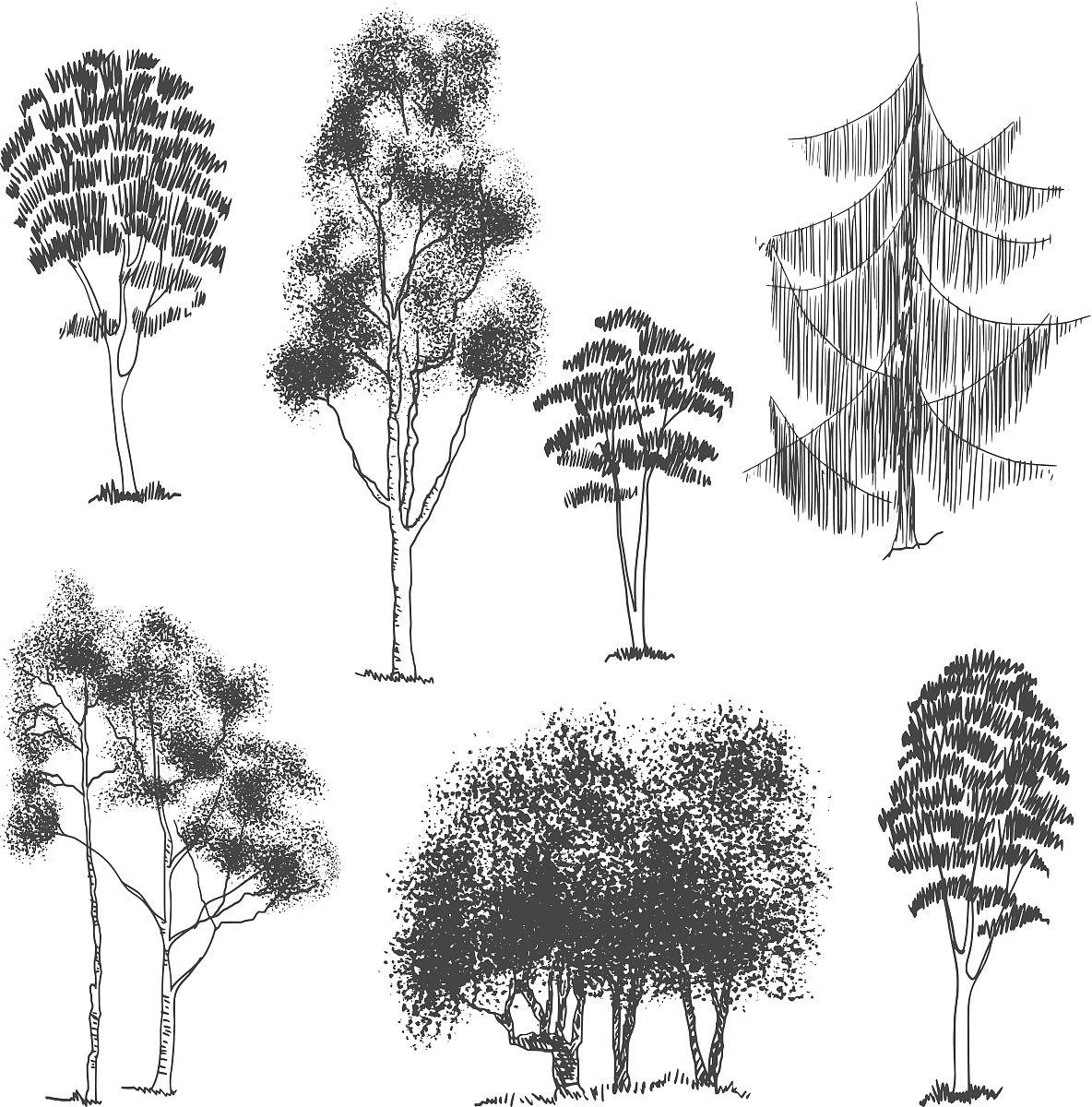 矢量手绘树木采集图片