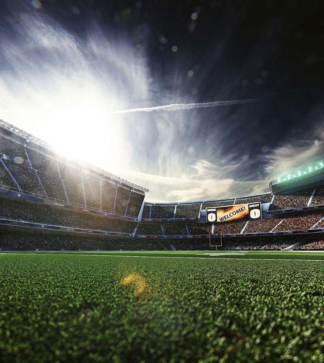 户外,广角,聚光照明,竞技运动,足球运动,美式足球,观众,群众,庭院图片