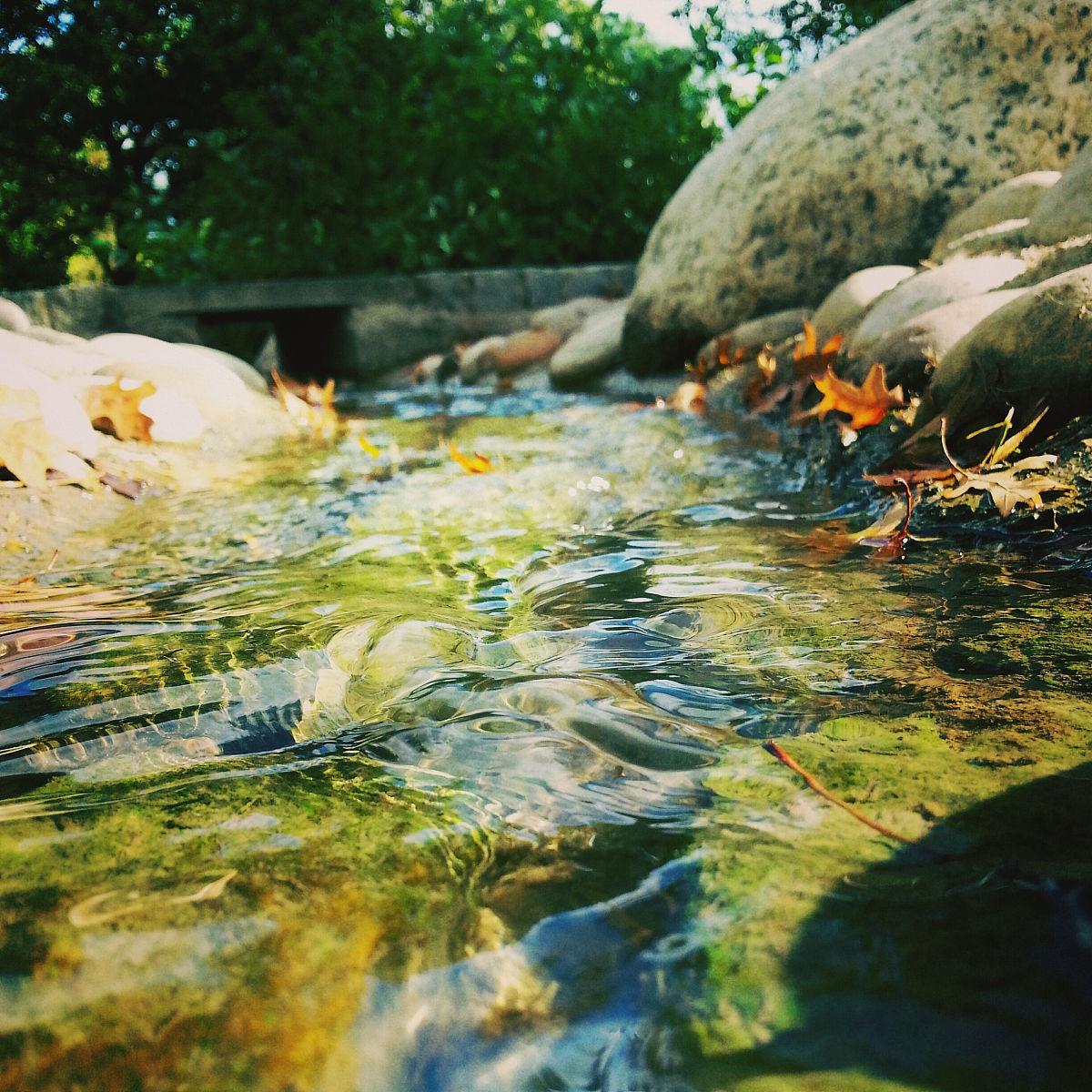 自然,白昼,伦敦城,水彩画颜料,正方形,秋天,公园,英国,自然美,饮用图片
