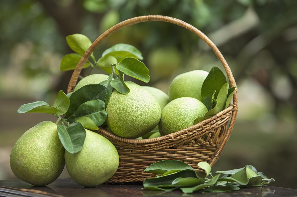 柚子,水果图片