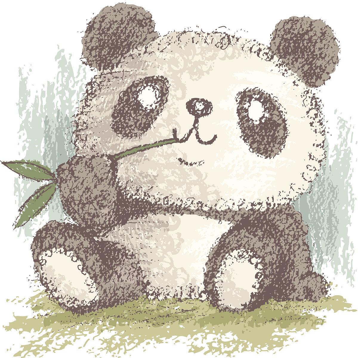 野生动物,亚洲,动物,野外动物,熊,大熊猫,不完全的,竹,熊猫,铅笔画图片