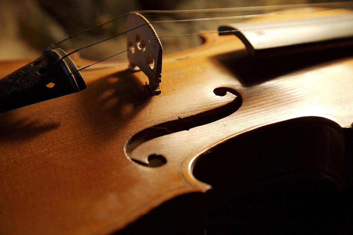 小提琴,音乐,乐器,部分,静物,娱乐,无人,进行中,线绳,彩色图片,琴弦图片
