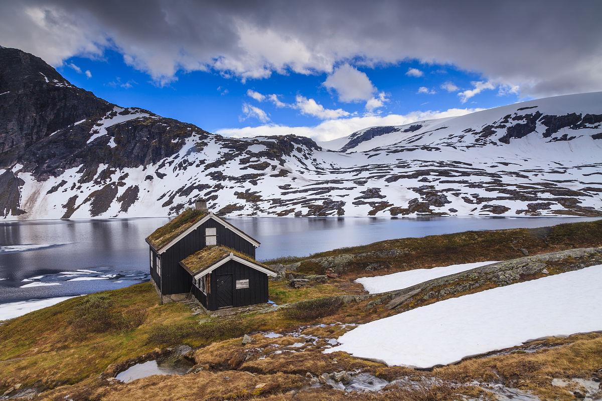 山,旅游,老年人,斯堪的纳维亚,挪威,商务旅行,环境保护,仅一朵花,北欧图片