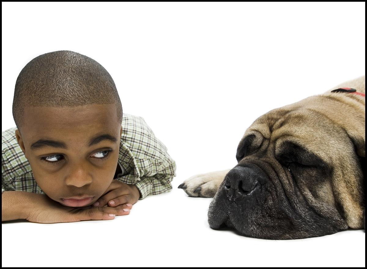 狗,衣服,休闲装,8岁到9岁,黑色人种,非洲人,上装,仅儿童,发型,剃光头图片