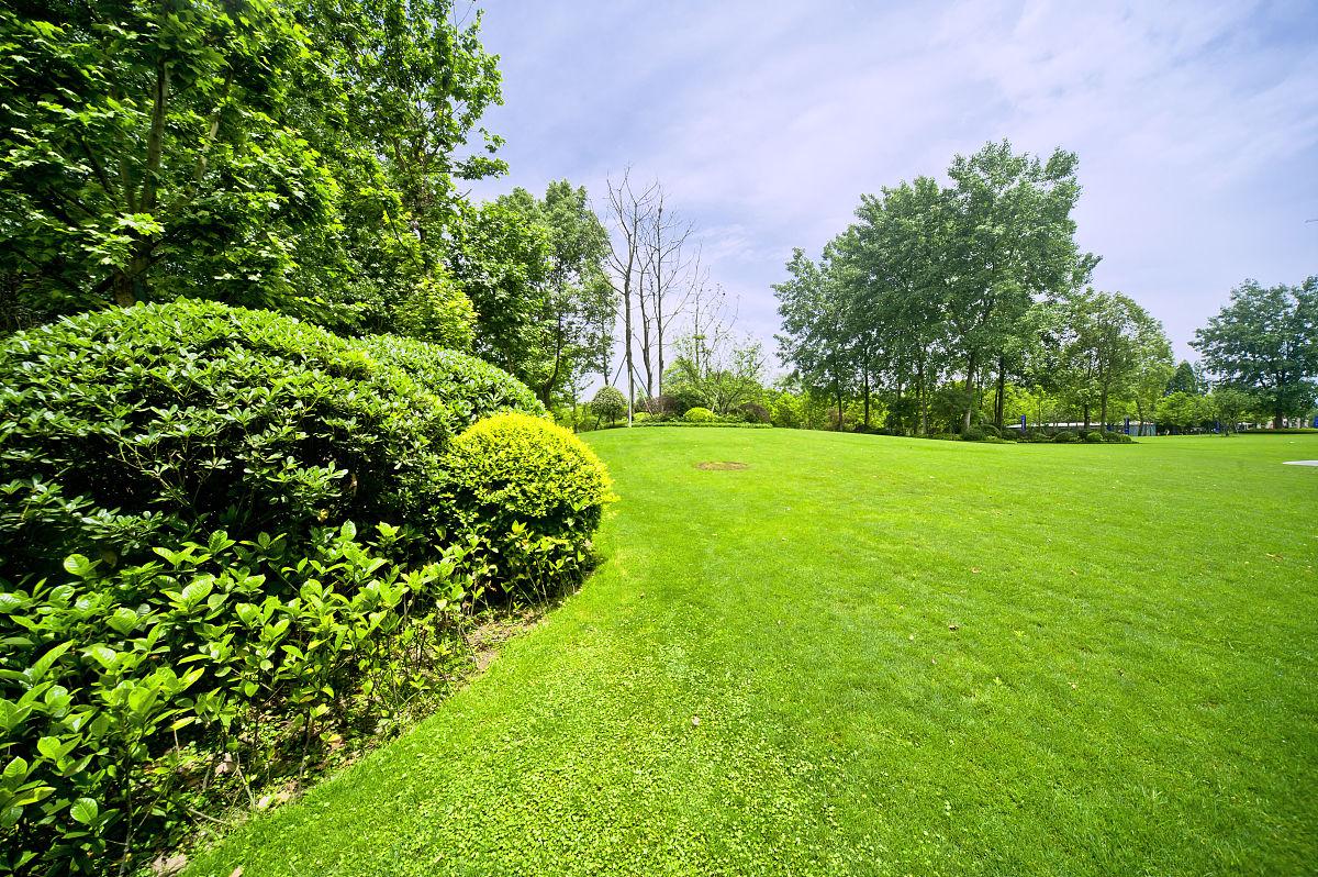 居住区,环境保护,草坪,草地,草,广场,户外,人行道,房地产,景观设计图片